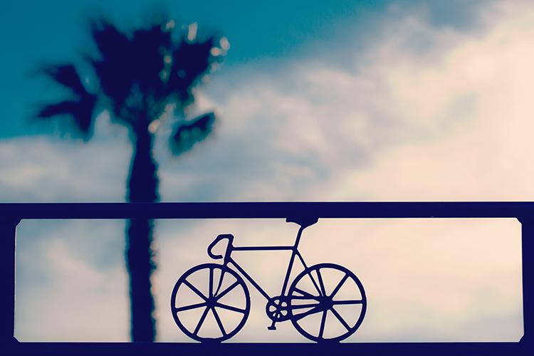 VYDZ.nl 7 redenen om vaker de fiets te pakken