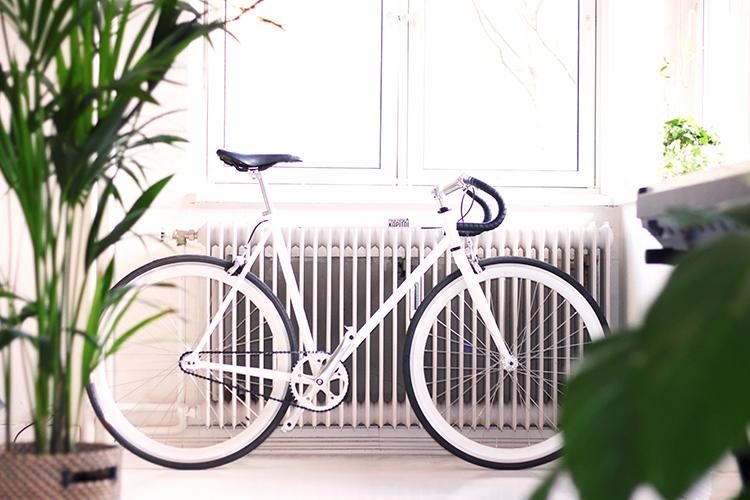 VYDZ.nl Wat is een fixie single speed fiets en wat is de geschiedenis?